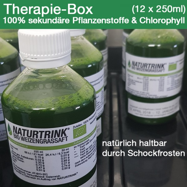 Therapie-Box BIO Weizengrassaft (12 x 250ml)